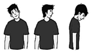 Latihan-kelenturan-dinamis-leher