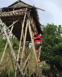 rumah adat Suku Kaili