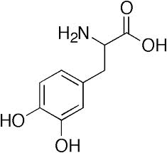 Alkaloida