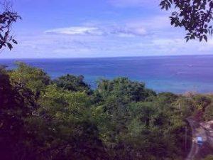 Taman Hutan Raya Bontobahari