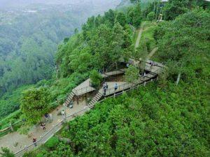 Taman Hutan Raya Ir. Djuanda