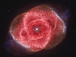 Nebula Bunga Mawar
