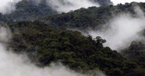 Hutan Monteverde-Costa Rica