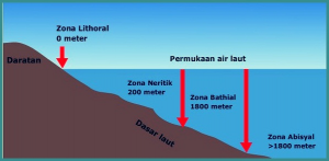Zona Abisal